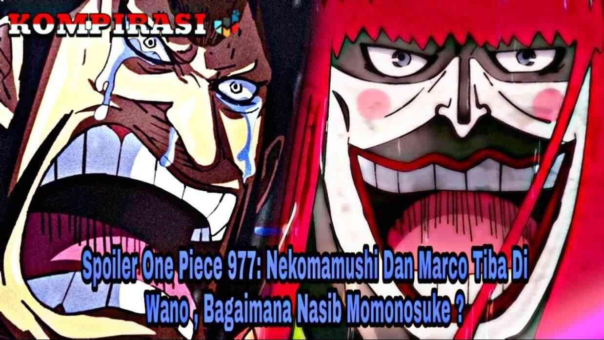 Spoiler One Piece 977: Nekomamushi Dan Marco Tiba Di Wano, Bagaimana Nasib Momonosuke ?
