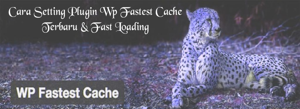 Cara Setting Plugin Wp Fastest Cache Terbaru & Fast Loading